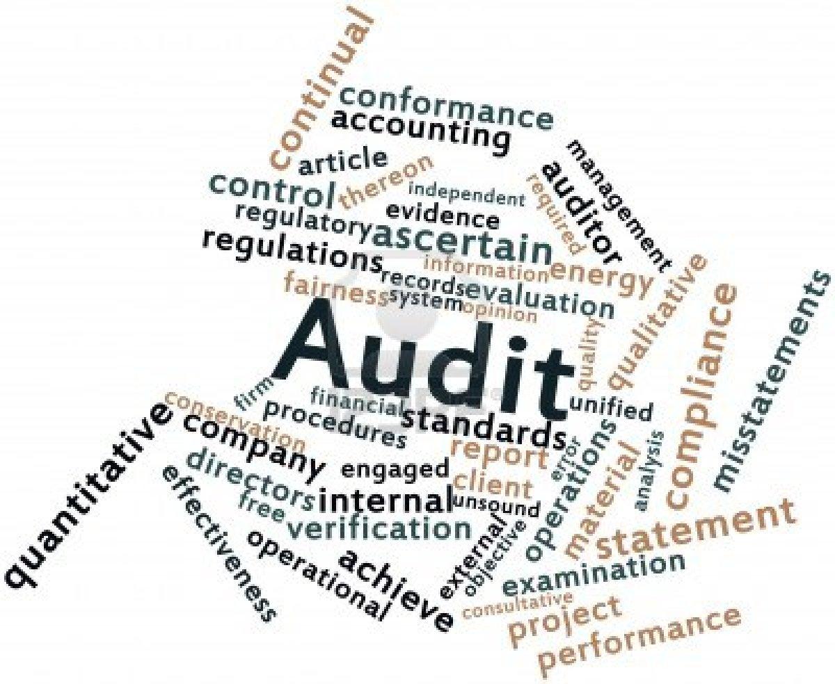 Audit-graphic